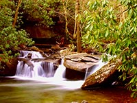 The Davidson River in Pisgah National Park (© Gary Stevens, CC-BY-3.0)