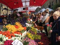 The Colombia Road Flower Market.
