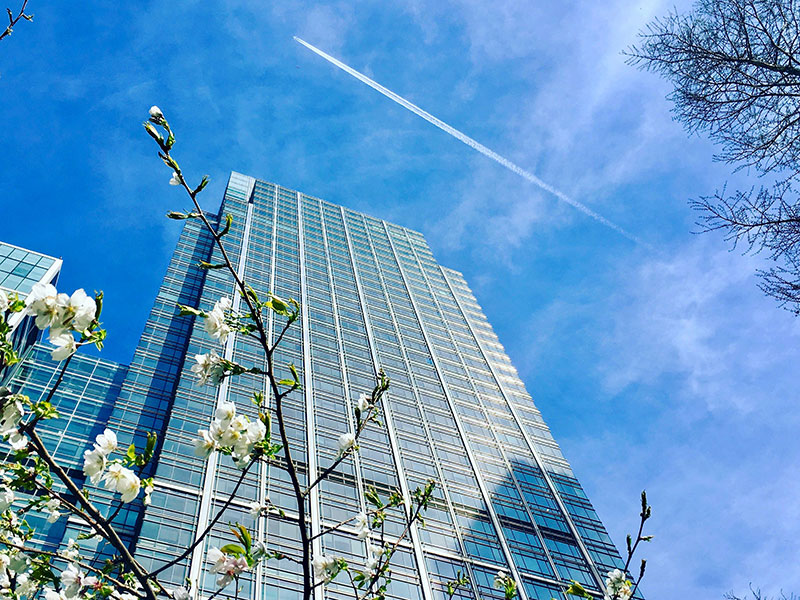 visit Canary Wharf attractions | top 10 Docklands things to do