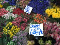 A flower stall on the Roman Road Market