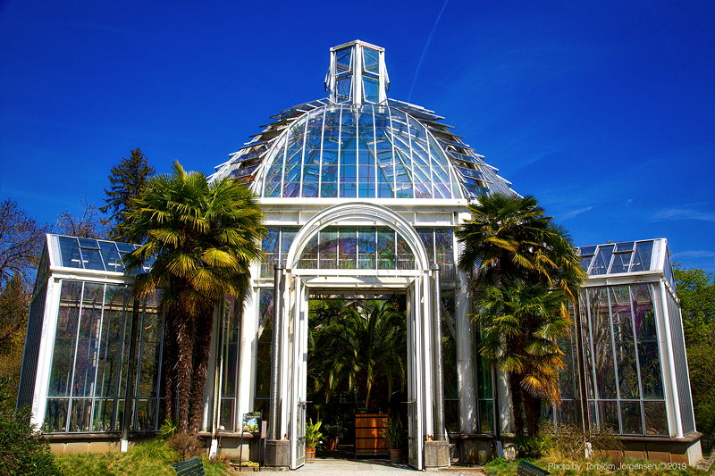 12 Best Things To Do In Geneva Visit Geneva Attractions