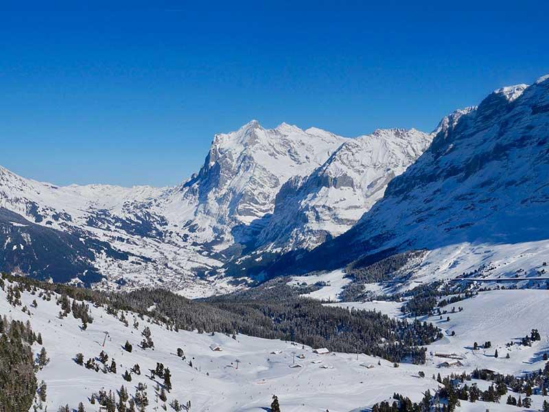 Grindelwald Ski Map Pdf