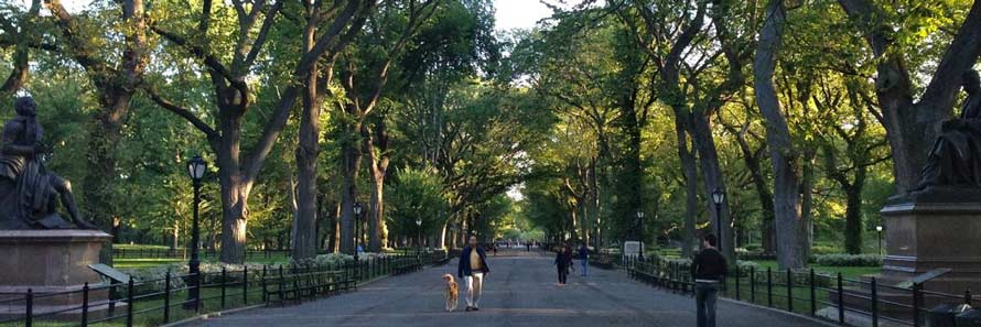 Things to do in new york visit best new york attractions for Things to do at central park