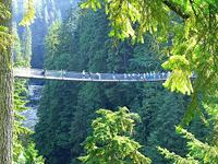 Vancouver's Capilano Suspension Bridge (© goobiebilly, disttributed under a CCA 2.0 Generic licence).