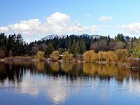 Vancouver's Stanley Park Lagoon (© Craig Nagy, distributed under a CCASA 2.0 Generic licence).