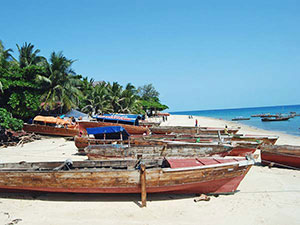 Fishing dhows at Kendwa beach